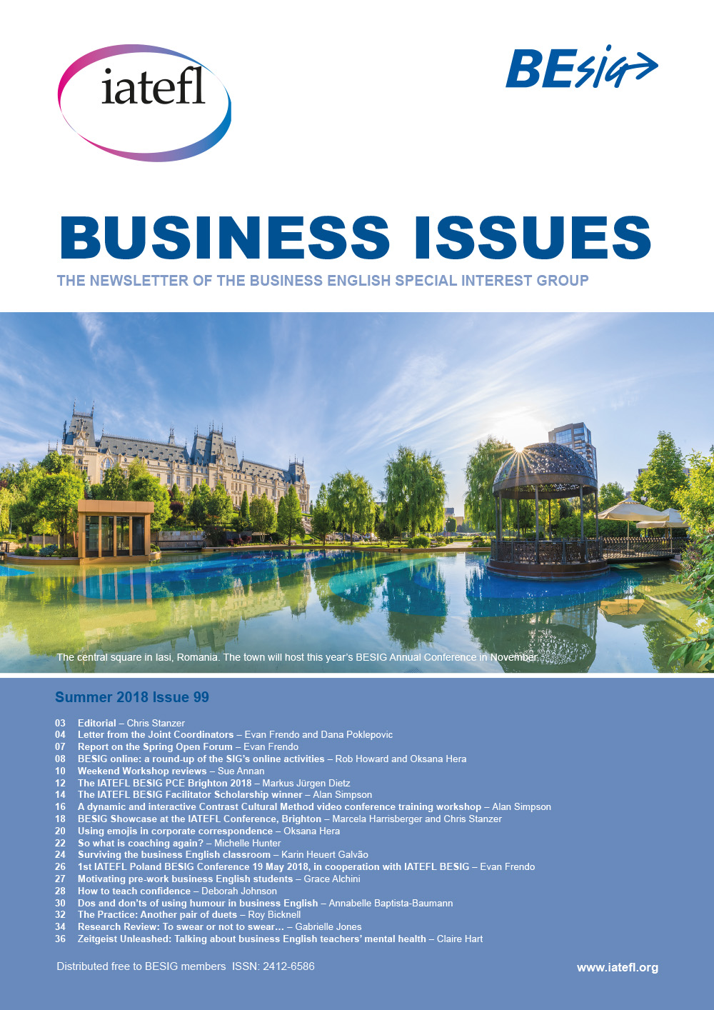 Business Issues cover